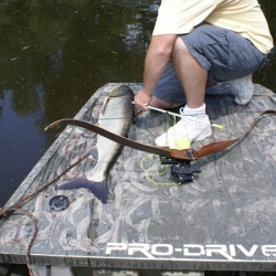 Bow Fishing with Pro-Drive